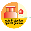 Gas water heater with auto protection function against gas leaks